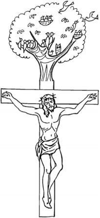 01 cross transformed